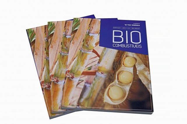 Caderno de Biocombustíveis
